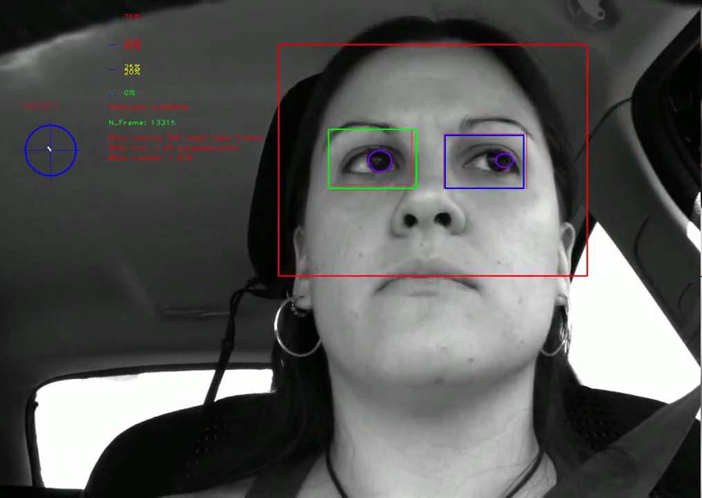 Driver Monitoring System Labeling